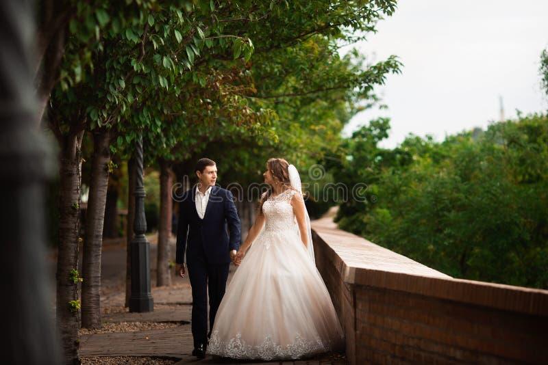Newlyweds που περπατά στο πάρκο Ευτυχές γαμήλιο ζεύγος πολυτέλειας που περπατά και που χαμογελά μεταξύ των δέντρων στοκ φωτογραφία