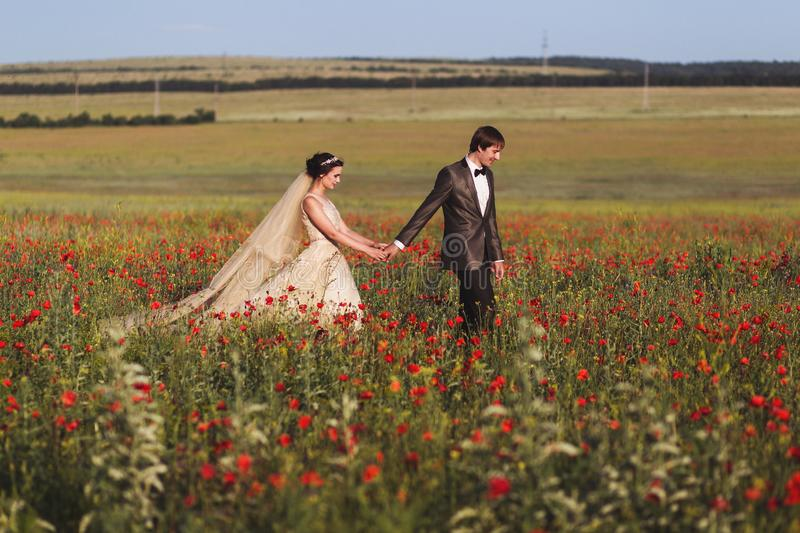 Newlyweds couple walking in amazing blossoming flowers field. Newlyweds couple walking in amazing blossoming poppy flowers field. Scope and panoramic views stock photography