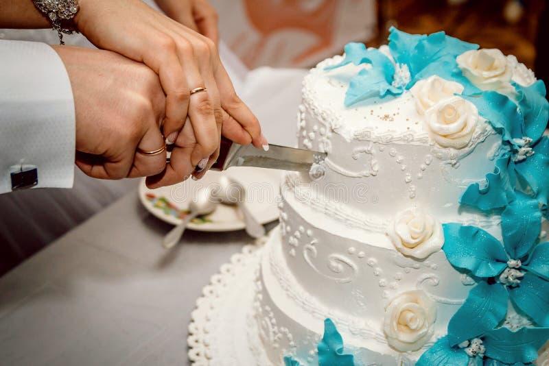The newlyweds cut the wedding cake royalty free stock photography