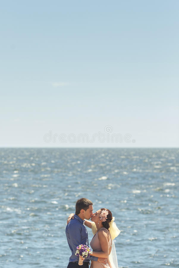Newlyweds embracing and kissing royalty free stock photos