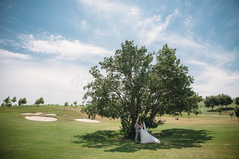 Newlyweds on a green tree background in a golf club on a wedding day. The groom in a business suit is gray and the bride. In a luxury white dress with a veil stock photos