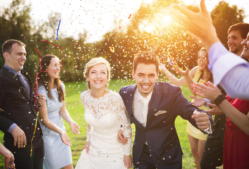 Download Newlyweds With Guest On Their Garden Party Stock Photo - Image of gorgeous, energy: 49455500