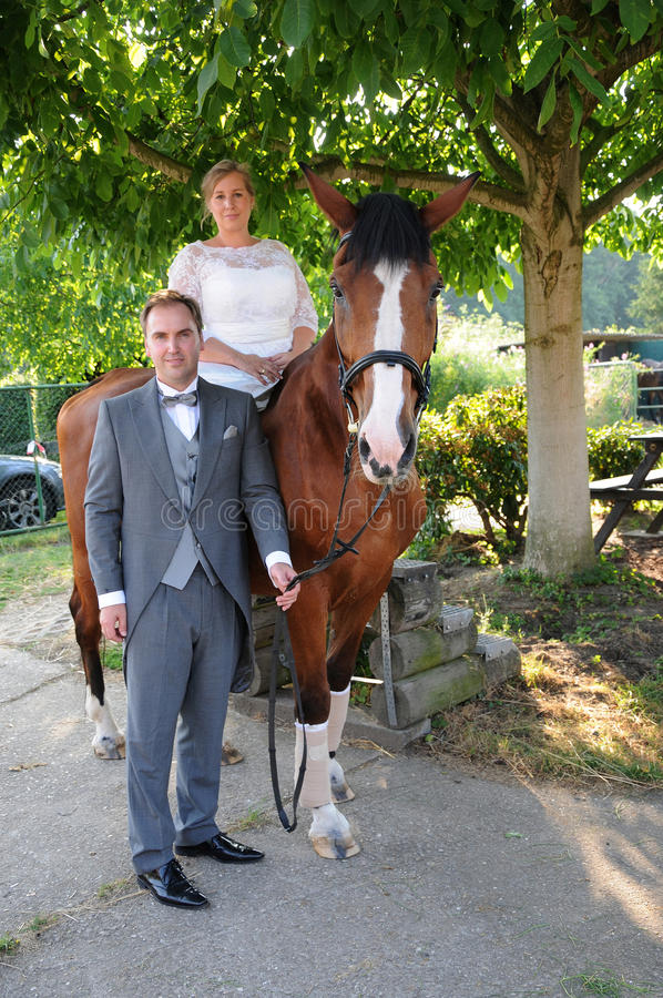 Newlyweds with horse stock photography