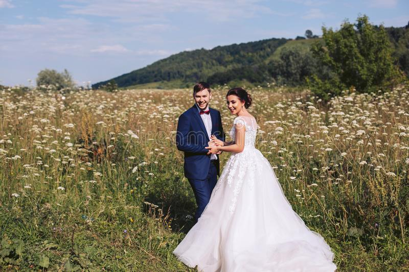 Newlyweds hugging in a meadow amongst tall grass and flowers stock image