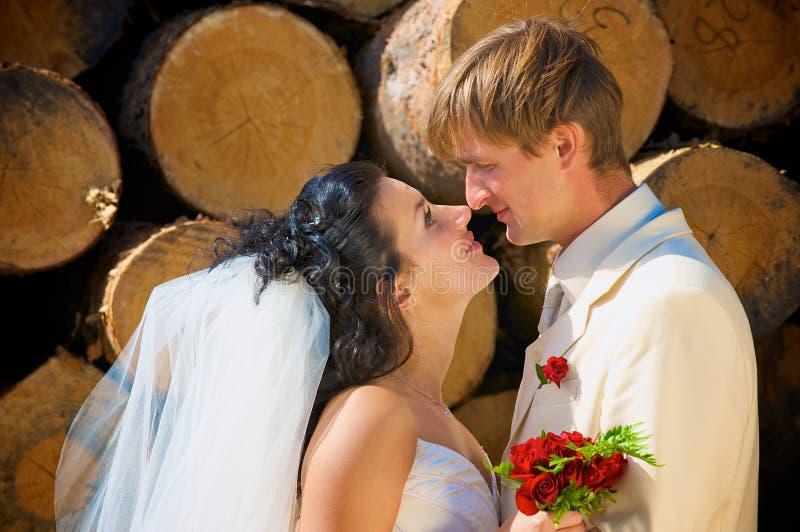 Newlyweds near the log royalty free stock images