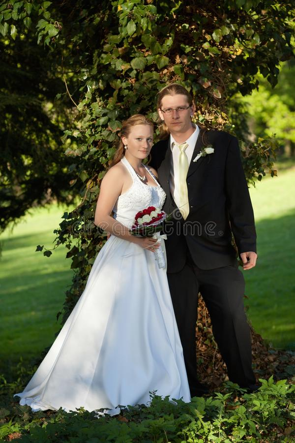 Download Newlyweds in the park stock photo. Image of green, happy - 27188752