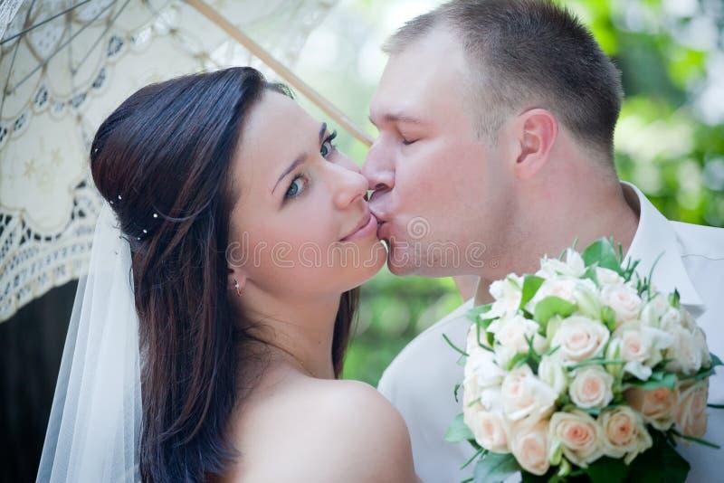 Newlyweds portrait royalty free stock image