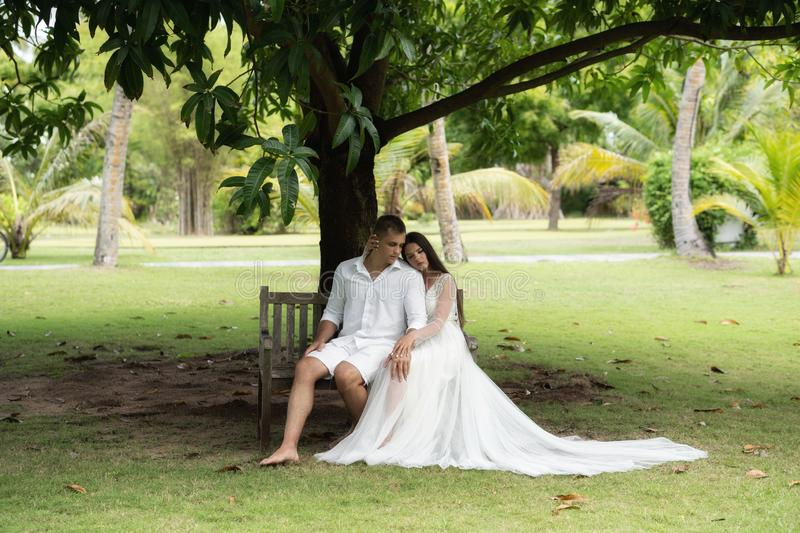 Newlyweds are sitting on an old bench under a huge tropical tree stock photo