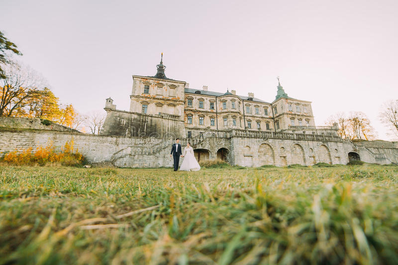 Newlyweds are walking in the garden of the antique gothic castle in the spring. stock photos