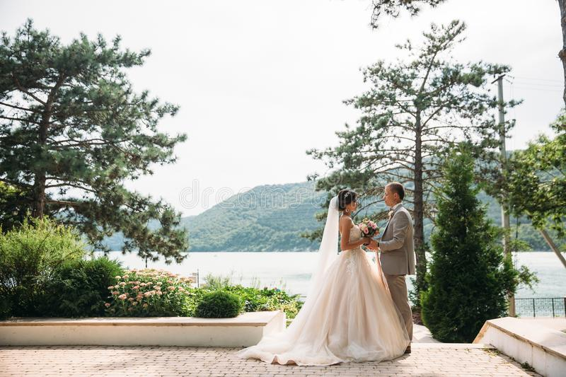 Newlyweds are walking outdoors on a wedding day. The groom in a gray suit with a white shirt and a bow tie holds a. Beautiful bride in her hand with a luxurious royalty free stock image
