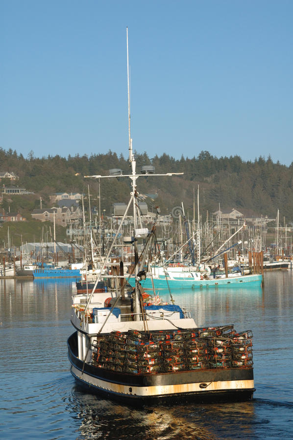 newport Орегон стоковые фото
