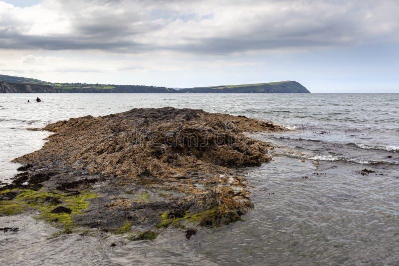 Newport Sands, Pembrokeshire stock images