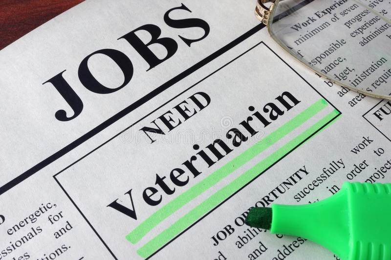 Newspaper with ads for vacancy Veterinarian. royalty free stock photo