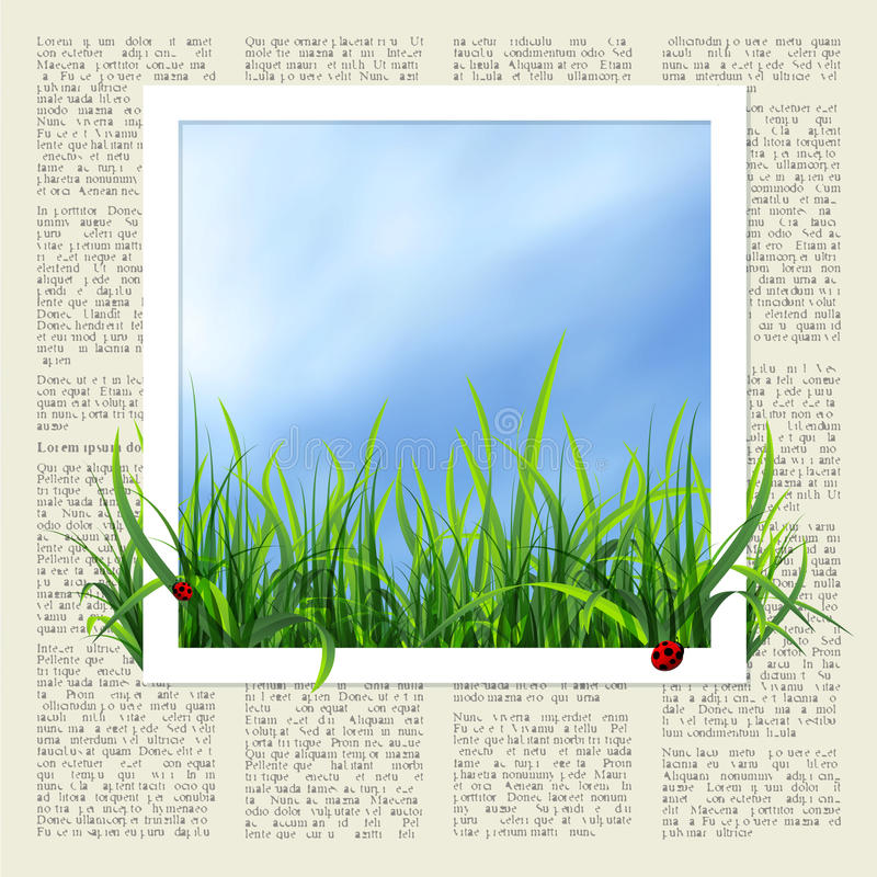 Newspaper with grass royalty free illustration