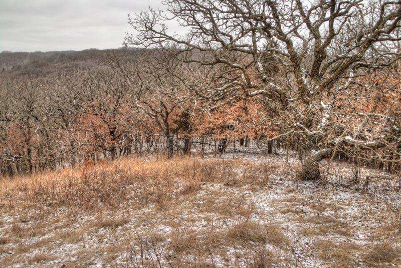 Newton Hills est un parc d'état dans l'état du Dakota du Sud américain près de Sioux Falls photo stock