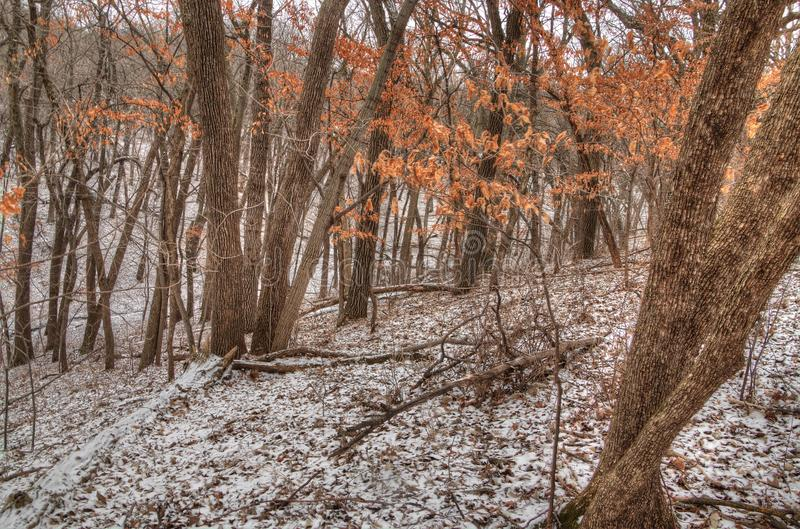 Newton Hills est un parc d'état dans l'état du Dakota du Sud américain près de Sioux Falls images stock