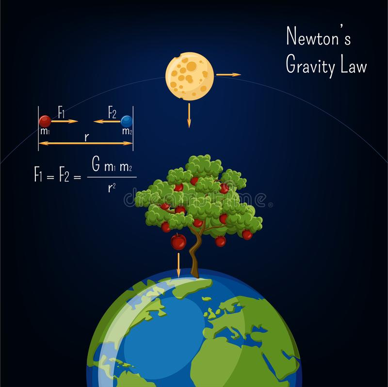 Newton`s Gravity law infographic with Earth globe, moon, apple tree and basic diagram. vector illustration