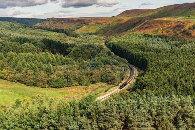 Newtondale, visto dal Levisham attracca, North Yorkshire, Inghilterra, Regno Unito fotografia stock libera da diritti
