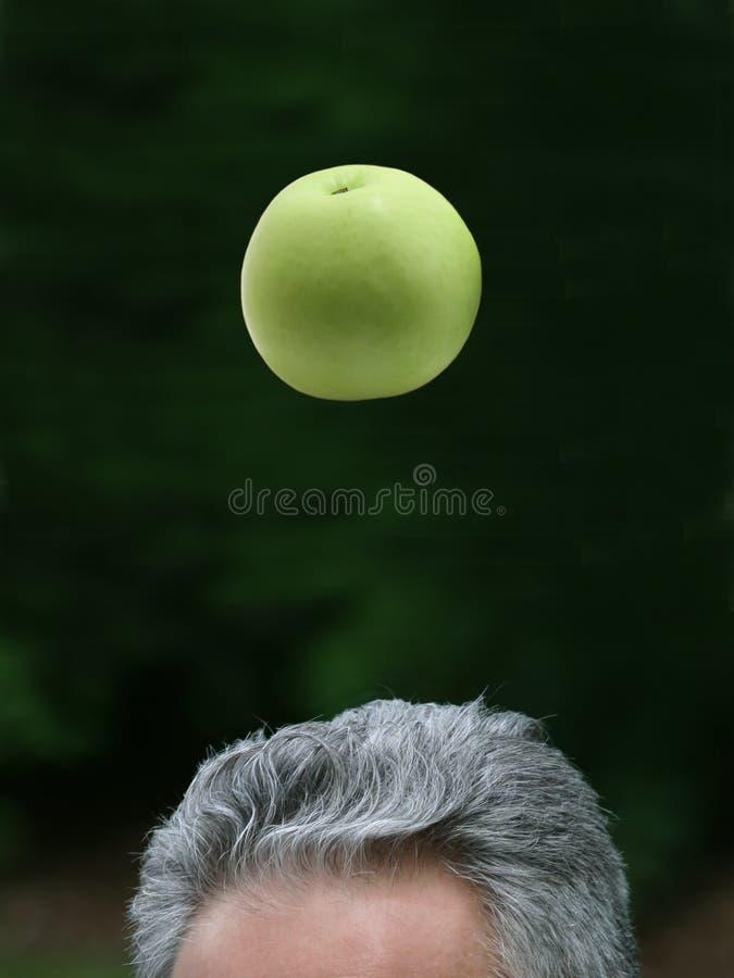 Newtons Apfel stockbild