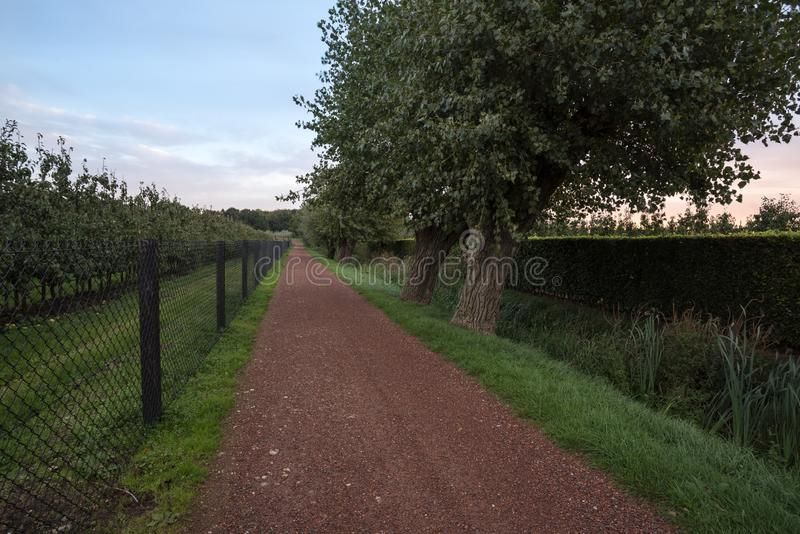 Hunting trail along the field. Next to the field of fruit trees there is a Hunting Trail royalty free stock photo