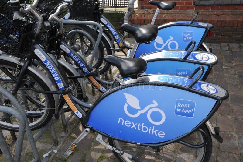 NEXTBIKE czynsz rower APP fotografia royalty free