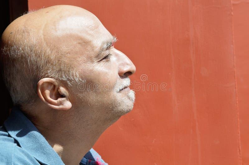 Nez mâle indien aîné balding de crochet de profil images libres de droits