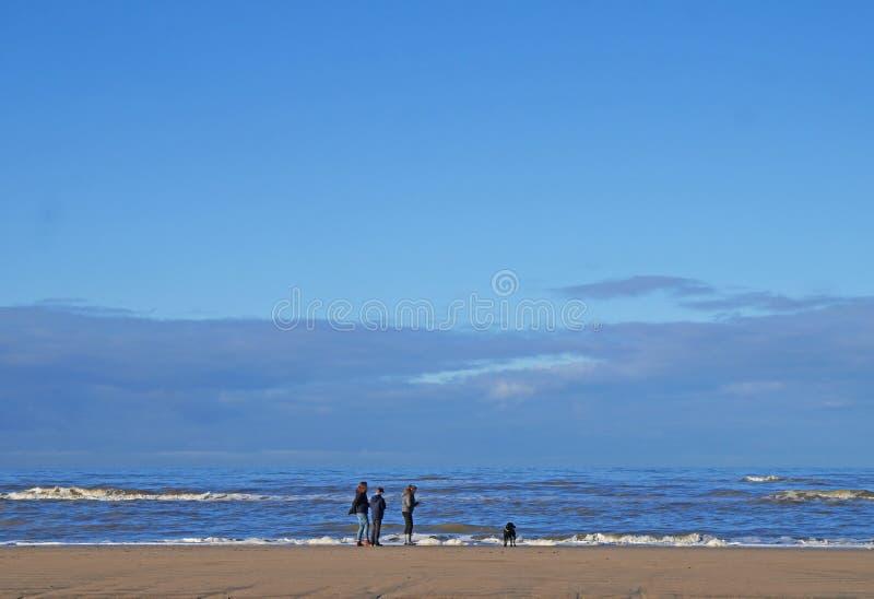Nfamily идя пляж с собакой стоковое изображение