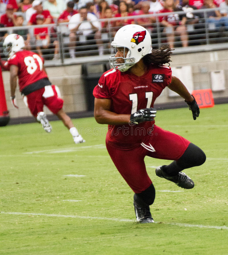 NFL Arizona Cardinals Football Pre-season Training Camp Practice royalty free stock images