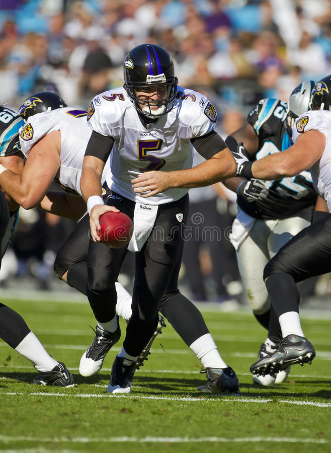 NFL: Cuervos del 21 de noviembre Baltimore contra las panteras de Carolina fotografía de archivo libre de regalías