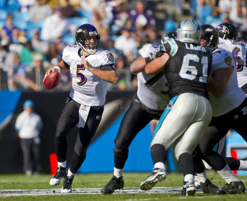 NFL: Cuervos del 21 de noviembre Baltimore contra las panteras de Carolina imagen de archivo libre de regalías