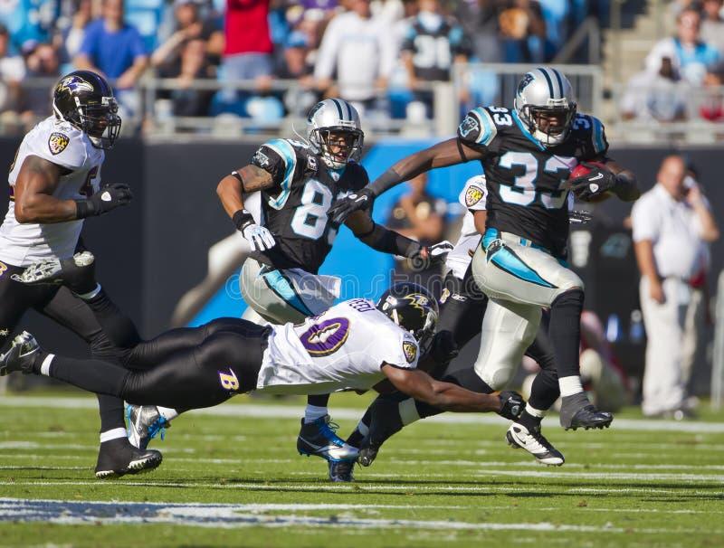 NFL: Cuervos del 21 de noviembre Baltimore contra las panteras de Carolina foto de archivo libre de regalías