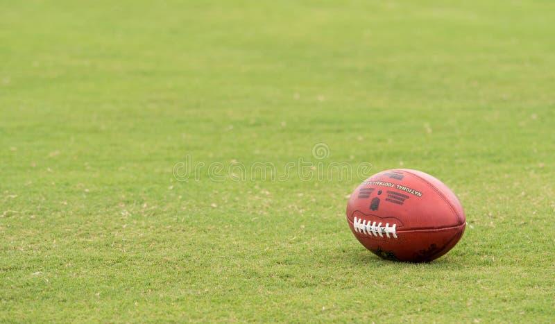 Nfl-fotboll royaltyfri bild