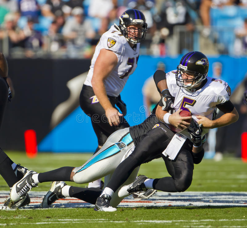 Download NFL:  Nov 21 Baltimore Ravens Vs Carolina Panthers Editorial Stock Photo - Image: 17108598