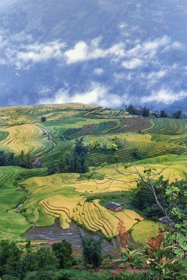 Ngai Thau, Υ Ty, λαοτιανό CAI, Βιετνάμ στοκ εικόνες
