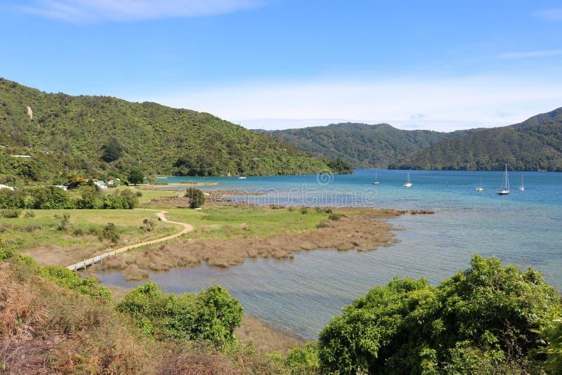 Ngakuta fjärdshoreline av drottningen Charlotte Sound NZ arkivfoton