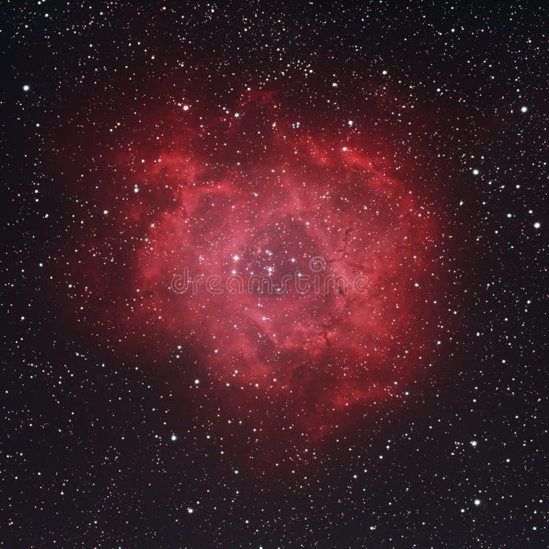 NGC 2237 -玫瑰华饰星云 免版税库存照片