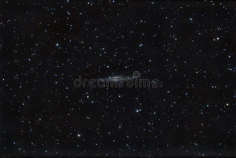 ngc för 891 galax royaltyfri fotografi