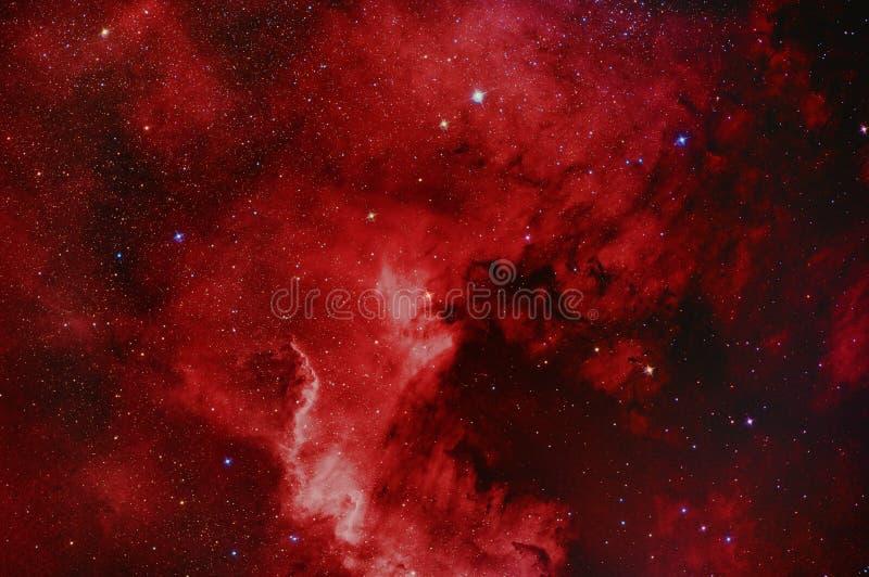 NGC7000 de Nevel van Noord-Amerika royalty-vrije stock afbeeldingen