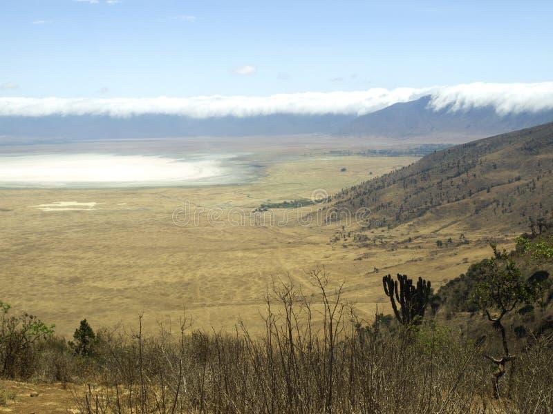 Ngorongoro crater stock images