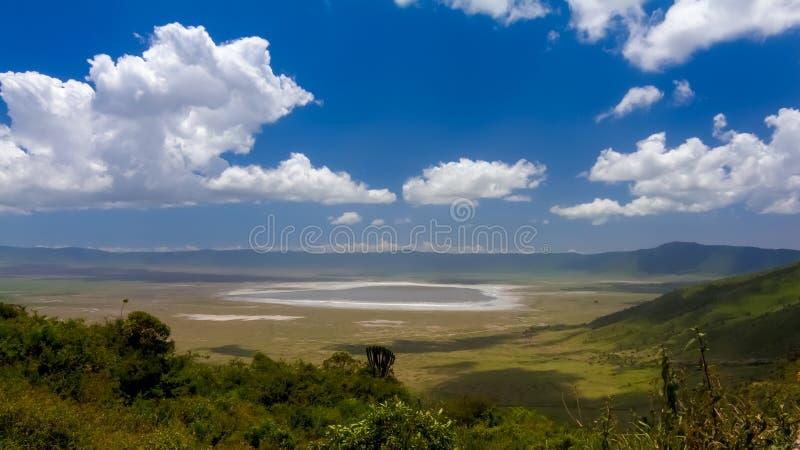 Ngorongoro krater arkivfoto