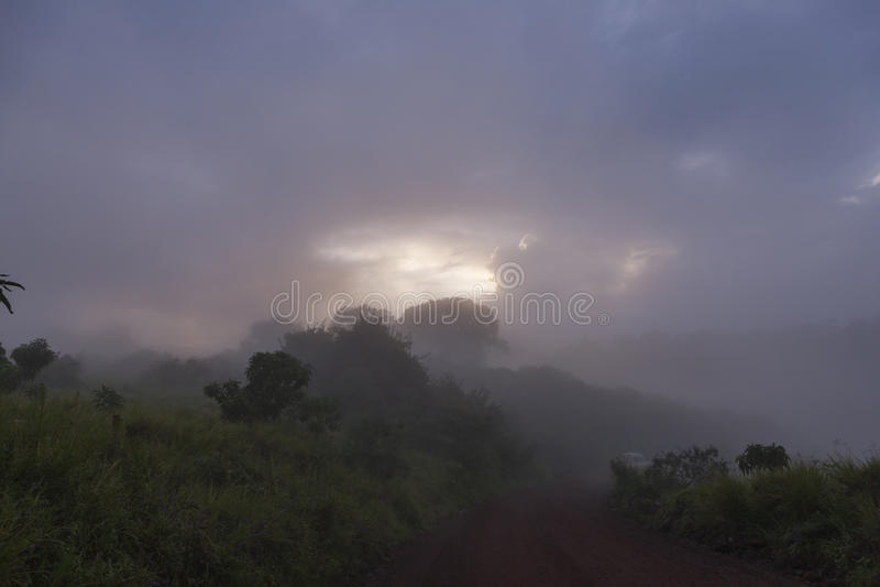 Ngorongoro-Krater-Nebel-Landschaft lizenzfreie stockfotografie