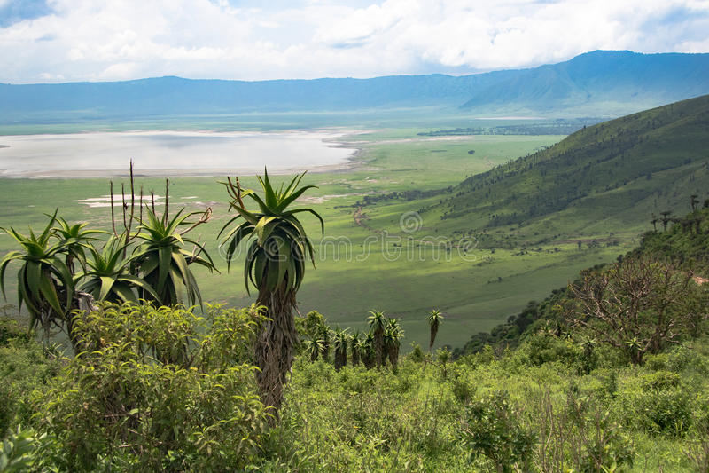 Ngorongoro krater z Jeziornym Magadi krajobrazem zdjęcie stock