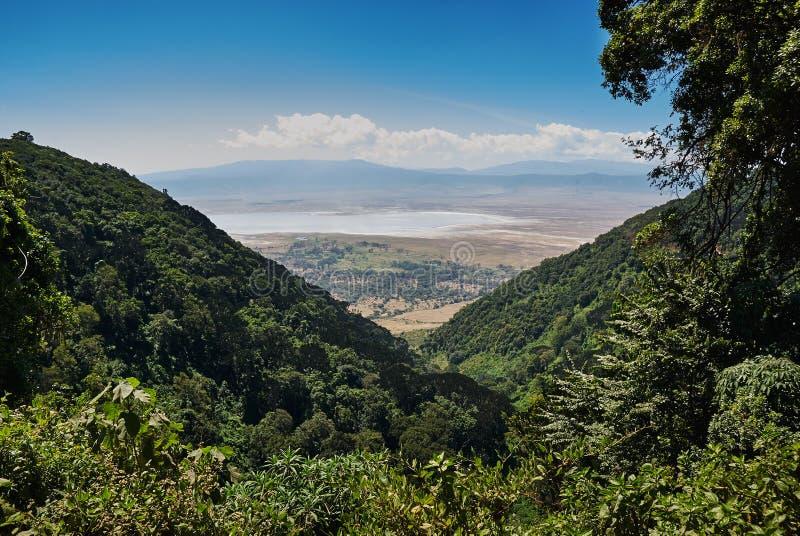 Ngorongoro Kraterlandschaft stockfotos