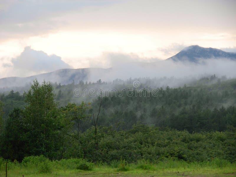 NH White Mountains royalty free stock image