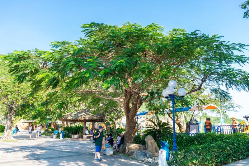 NHA TRANG, VIETNAM - APRIL 16, 2019: Tourists under a tropical tree in an amusement park Vinpearl in Nha Trang Vietnam. NHA TRANG, VIETNAM - APRIL 16, 2019 royalty free stock images