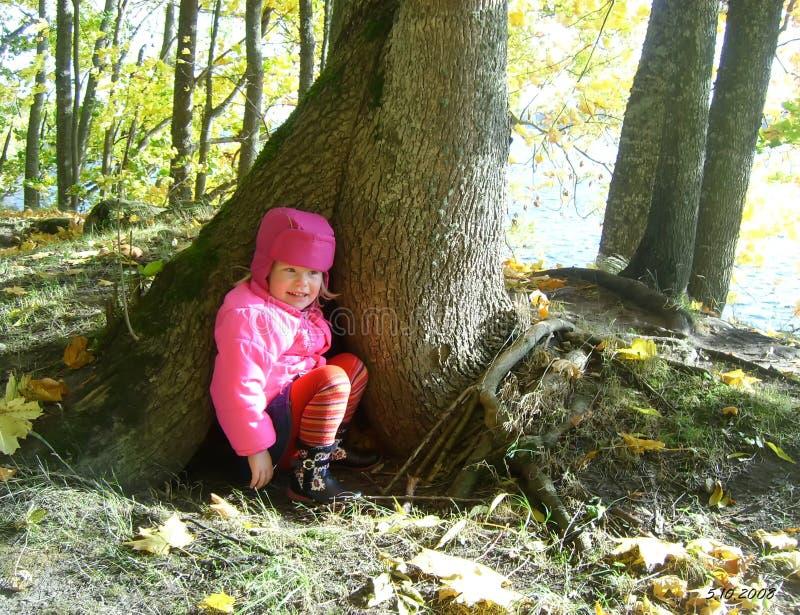 Niña adorable cerca de un árbol en el parque del otoño imagen de archivo