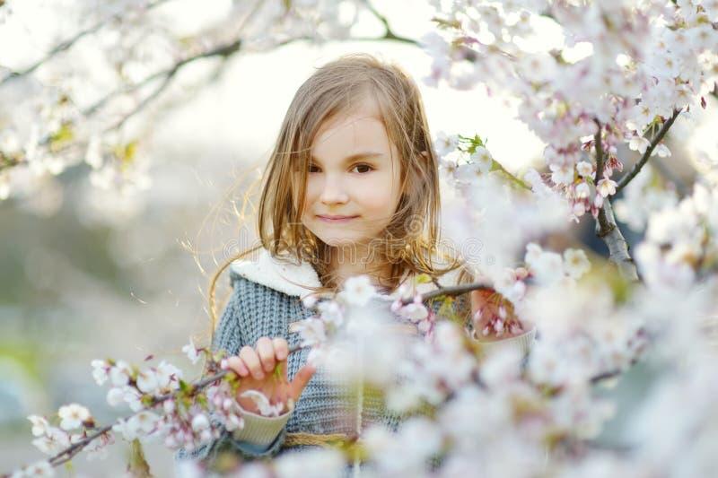 Niña adorable en jardín floreciente del cerezo en día de primavera hermoso imágenes de archivo libres de regalías