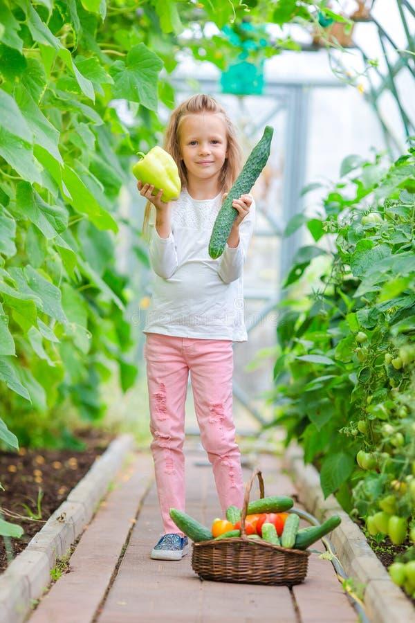 Niña adorable que cosecha en invernadero Retrato del niño con el pepino y la pimienta grandes en manos imagen de archivo