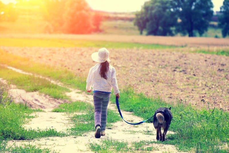 Niña con el perro que camina en el camino rural fotos de archivo
