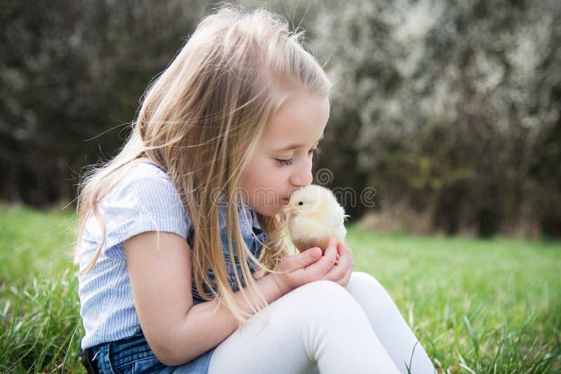 Niña con el pollo imagen de archivo